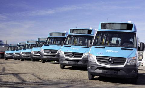 Setra und Sprinter Busse im Linieneinsatz auf Grande Terre